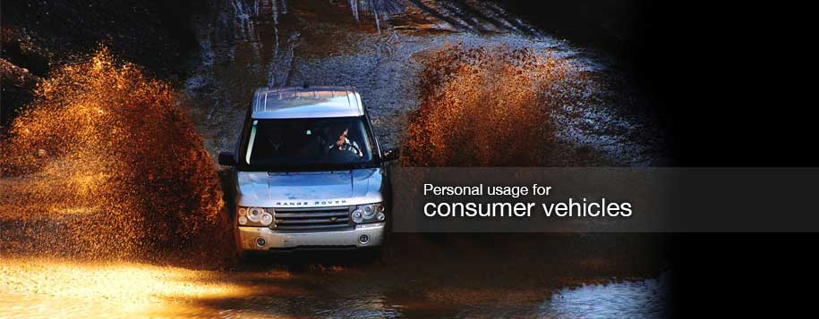 Consumer Action Cameras