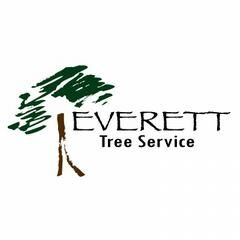 Everett-Tree-Service